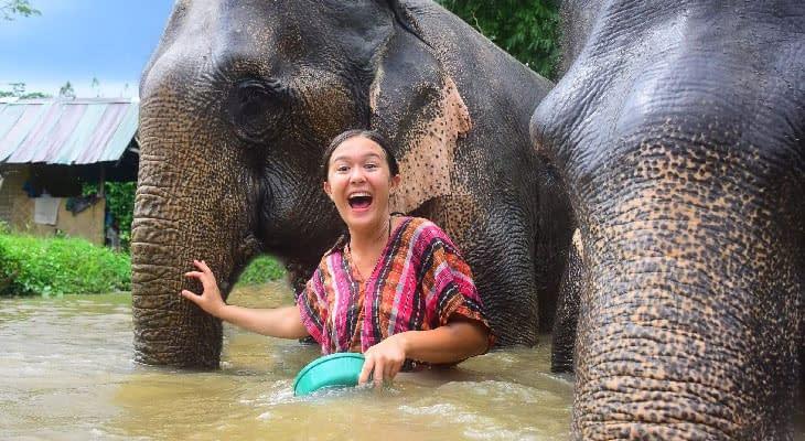 olifanten reservaat chiang mai