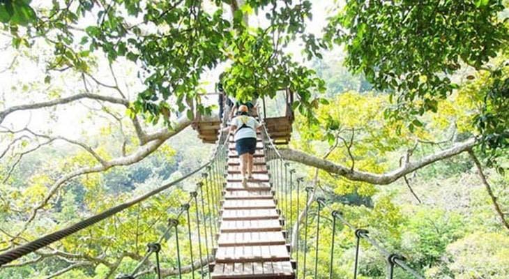 phuket skywalk in de jungle
