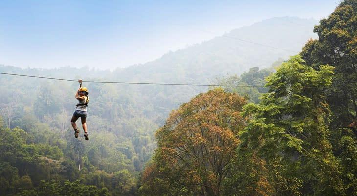 tokkelen chiang mai flight of the gibbon