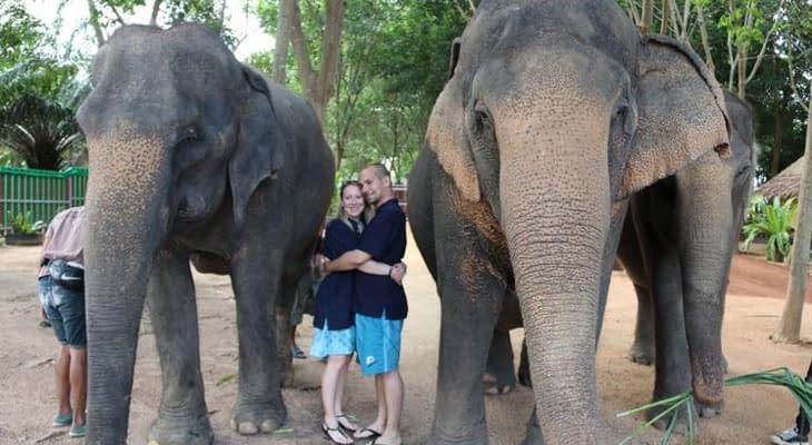 samui elephant home ethische olifanten sanctuary